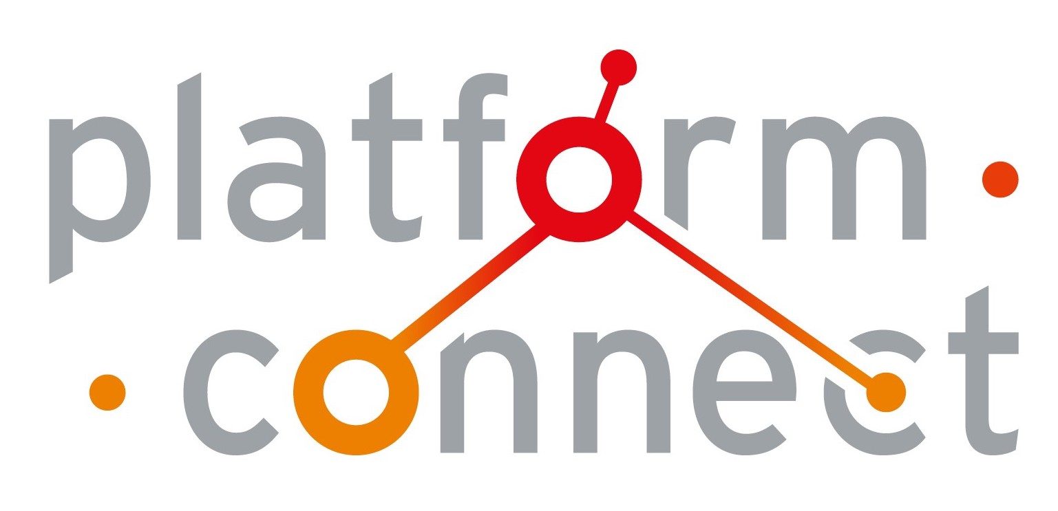 Connect - Liliane Fonds Logo